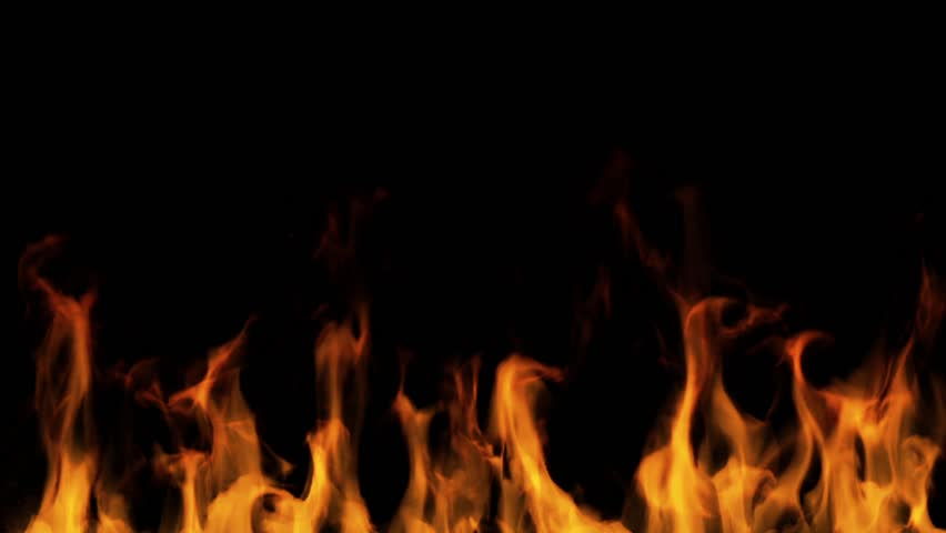Fire flames on a black background #10062578