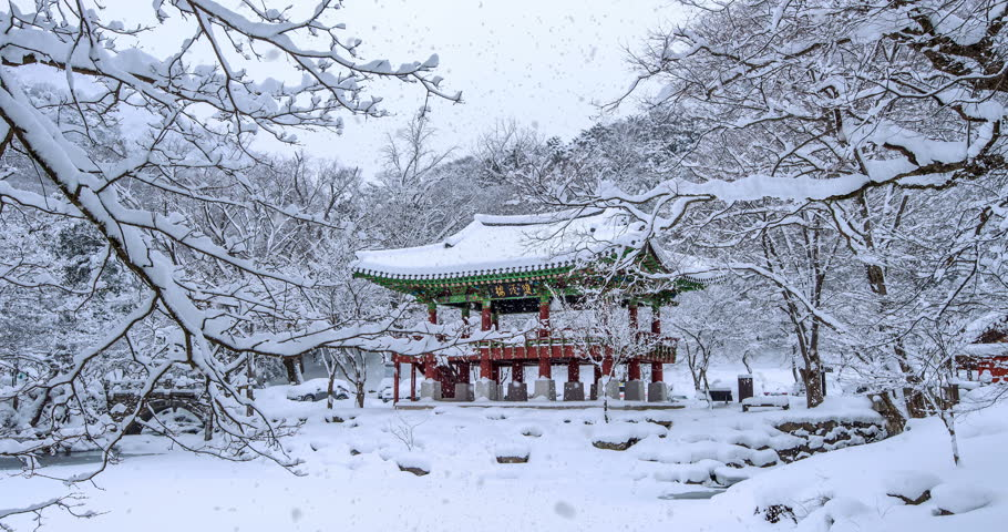 Falling snow at Baekyangsa temple in winter.