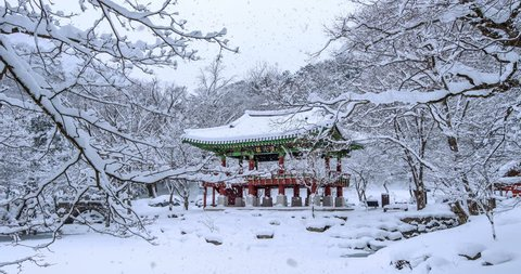 Falling snow at Baekyangsa temple in winter.