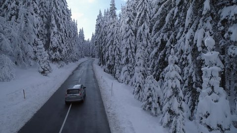 Aerial - Car driving through the forest with heavily snow-capped pine trees