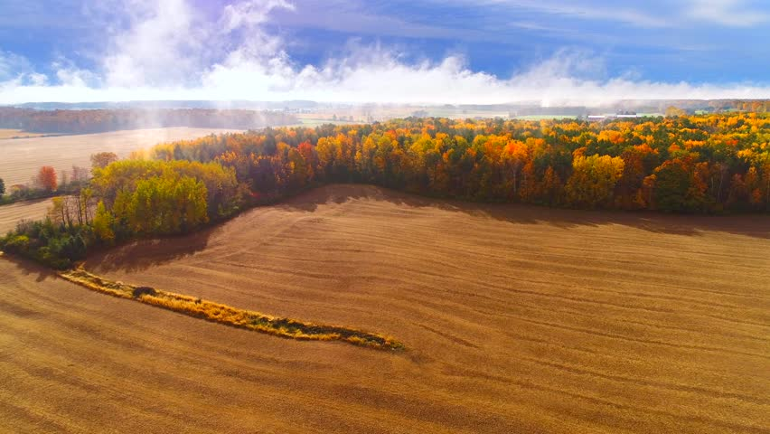 Dazzling aerial view of breathtaking Autumn colors with misty fog, aerial view.  | Shutterstock HD Video #1007623438