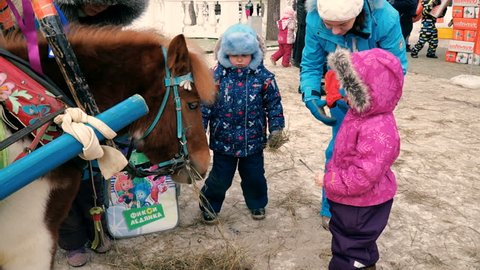 Children feed the pony hay, dry grass. City park, winter. Maslenitsa celebration. Perm, Russia, Fabruary, 18, 2018.