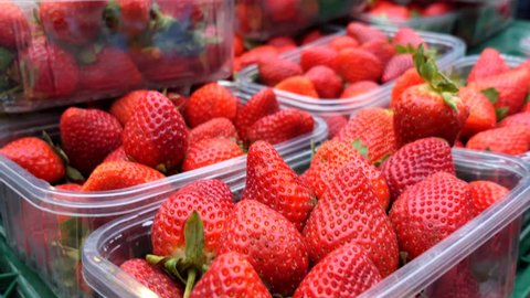 Strawberries in plastic boxes.