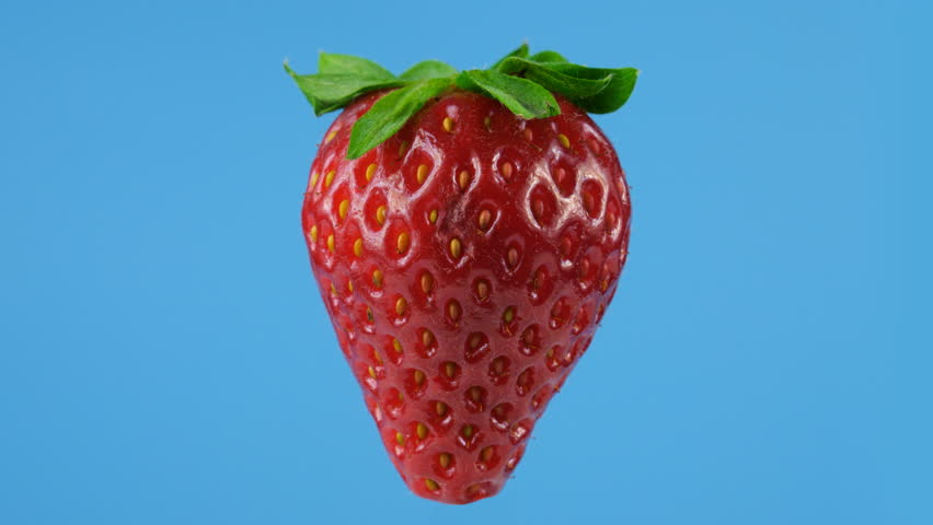 One big red ripe strawberry, looped rotation, blue background, ProRes codec, 422 HQ