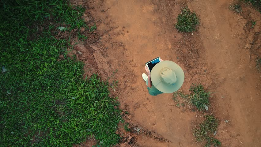 AERIAL. 100 meters up. Top view directly above a asian female farmer in the hat monitoring his farm with a tablet. Palms farm in Thailand. | Shutterstock HD Video #1008307768