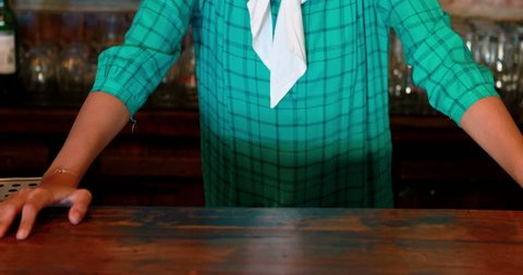 Portrait of barmaid smiling at bar counter in pub