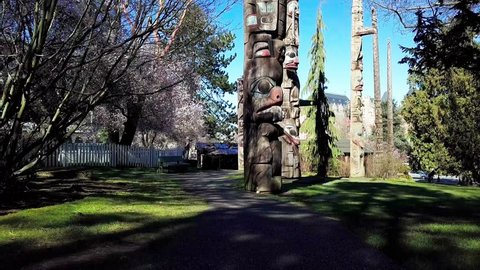 Victoria, British Columbia,Canada- March 11, 2018: Springtime in Thunderbird totem poles park aerial video 1.  Totem poles made by indigenous Canadians.