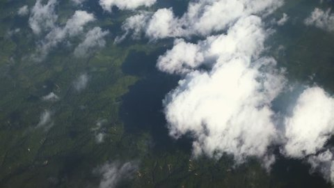 Cloudy New Zealand Forest from a Plane