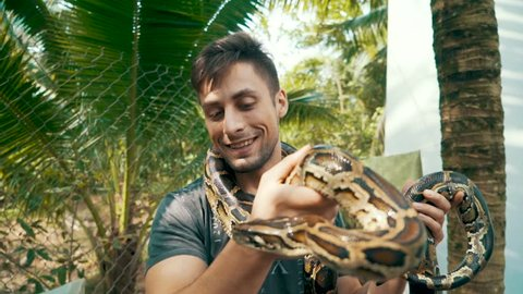 Attractive male tourist holding a Burmese Python around his neck and hands looks closely at the head of the snake