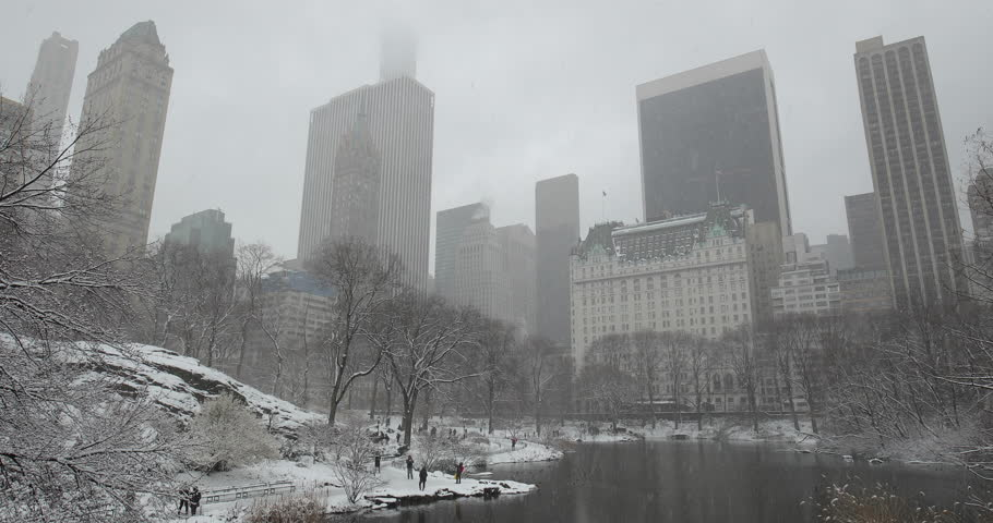 New York City Central Park in snow | Shutterstock HD Video #1008879668