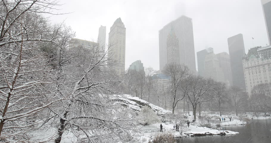 New York City Central Park in snow | Shutterstock HD Video #1008879698