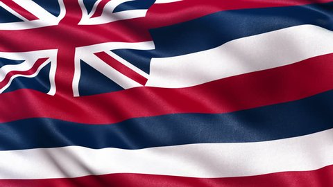 Realistic Ultra-HD Hawaii state flag waving in the wind. Seamless loop with highly detailed fabric texture. Loop ready in 4k resolution.