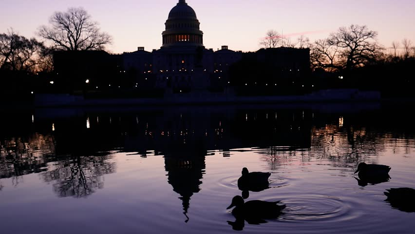 The sun rises behind the US Capitol building as ducks swim across the Reflecting Pool in Washington, D.C.