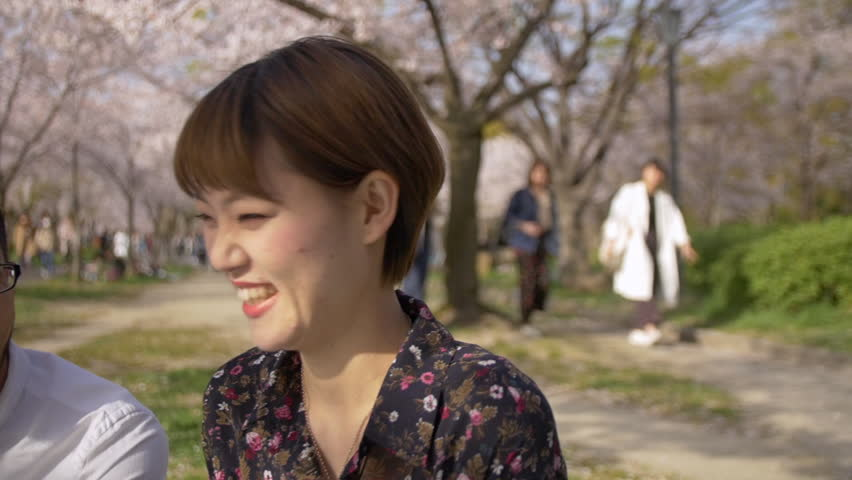 Beautiful international friends eating strawberries under Japanese cherry blossom trees. | Shutterstock HD Video #1009385888