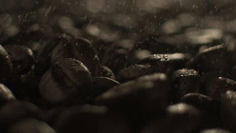An extreme close up of water sprayed on roasted coffee beans.