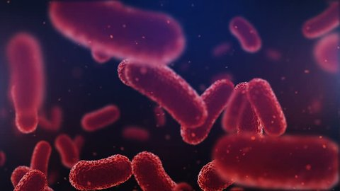 3d animation of flying over group of bacterias. Medical video background