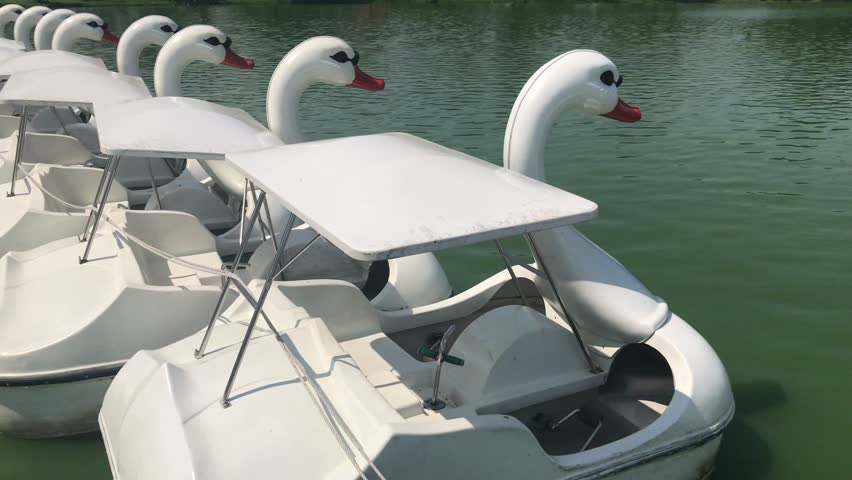 Duck Boat Pedalo or Paddle Goose Boat in Public Lake Park Suanluang RAMA 9 Bangkok, Thailand for Relaxing time, Landscape Lake and white Paddle Boats pedal in Public Park view