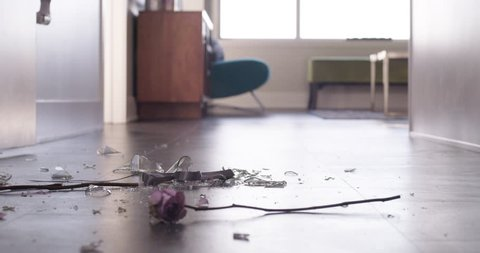 Flower and Vase break on floor heart broken divorce metaphor