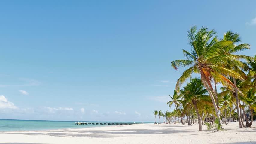 Island Saona. White Sand, Beach, Caribbean Sea, Palm trees in Punta Cana. Caribbean sea, Punta Cana beaches, Dominican Republic beach,  Tropical Beach And Palm Leaves Tropical Paradise island. Palms