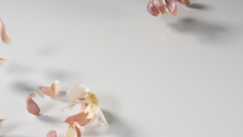 Garlic pieces thrown in slow motion onto a white surface background. Dolly shot through falling herbs. individual isolated slices for herbal food preparation food. | Shutterstock HD Video #1010102588