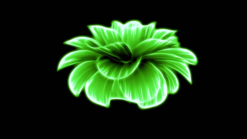 Opening long blooming green neon flower time-lapse 3d animation isolated on background new quality beautiful holiday natural floral retro vintage cool nice 4k video footage
