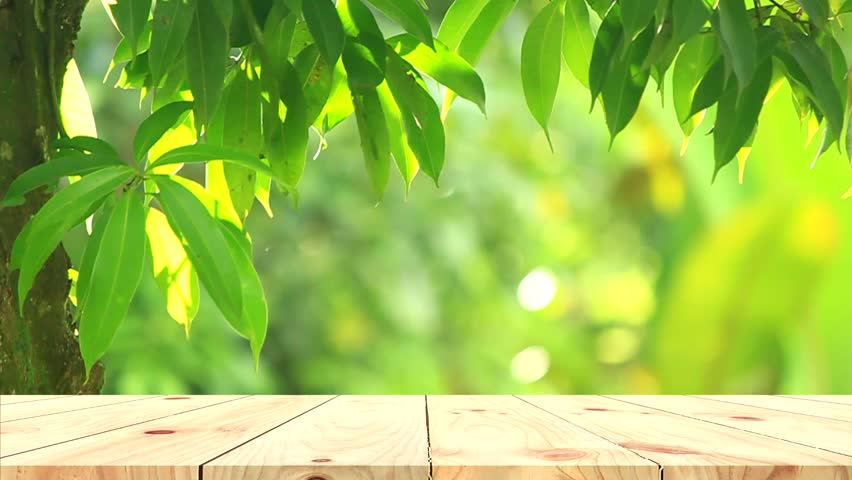 Wood Table Top On Green Stock Footage Video 100 Royalty Free 1010208608 Shutterstock
