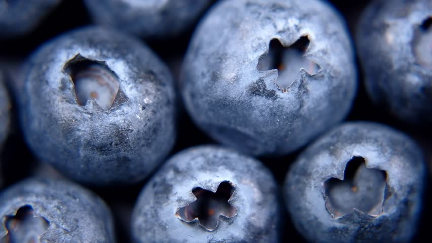 Detail of Blueberries. Macro trucking shot. 4K resolution top view.
