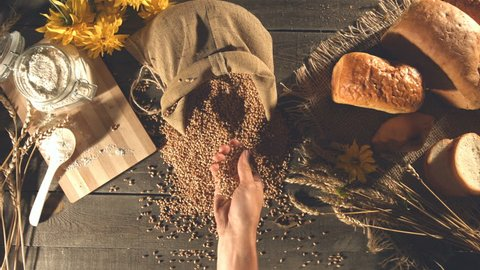 The man's hand takes a handful of wheat grains from the sack and pours it back into the sack. Still life with bread, wheat, flour and flowers. Slow motion. Top view. Horizontal pan.