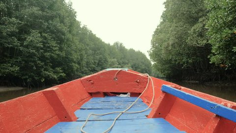 Boat view moving forward nearly mangrove forest at the river estuary the conserve sea nature environment