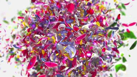 Exploding flower petals in 4K