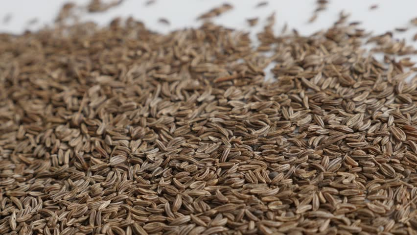 Lot of meridian fennel seed close-up 4K video