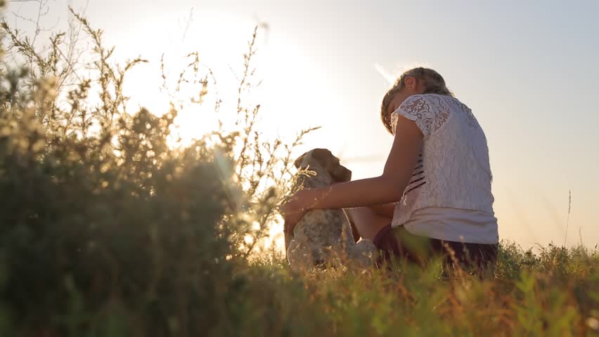 A girl looking at sunset with her dog | Shutterstock HD Video #1011165608