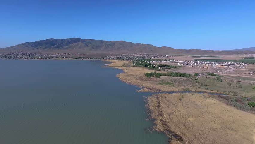 High aerial view flying along a lake shoreline with birds flying all around and a town and mountains in the distance