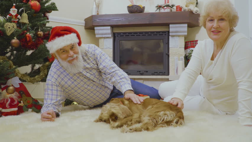 Old woman and man lie on the carpet and stroke a dog near Christmas tree | Shutterstock HD Video #1011438758