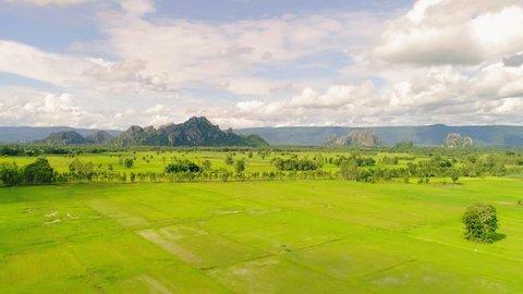 Phitsanulok Rice Field and mountains