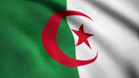 Algeria flag waving animation. Flag of Algeria waving in the wind