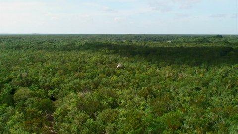 Zoom Into Mayan Pyramid In Lush Jungle