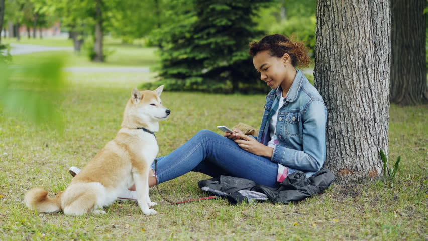 Side view of pretty mixed race girl using smartphone relaxing in park under tree while her cute shiba inu dog is sitting near her owner and enjoying nature. #1012911938