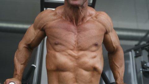 Muscular Bodybuilder Guy Doing Exercises Vidéos de stock