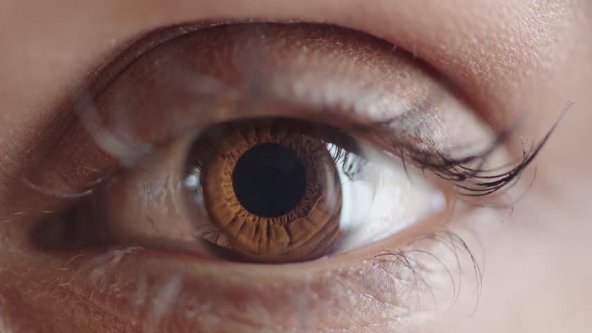 Close up human eye opening iris contracting optical beauty macro | Shutterstock HD Video #1013095958