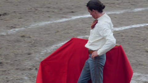 Matador using a red cape to tire out a bleeding bull during the final stage of the bullfight in an arena