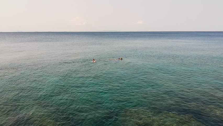 Snorkelling couple, tropical sea, holiday mood, horizon | Shutterstock HD Video #1013241968