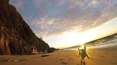 Dog running on sandy beach in slow motion having fun at sunrise