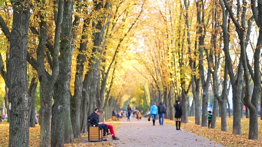 CHERNIHIV, UKRAINE- OCTOBER 18, 2017: People of different ages enjoy warm beautiful day in golden urban autumn park.