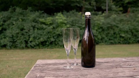 Champagneglass and bottle