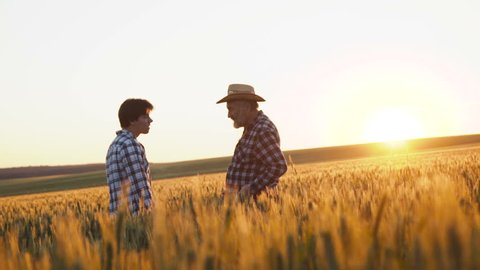 The handshaking between father and son in the golden wheat field on sunset. Inheritance. Old man gives the farming manage to his son. 4K