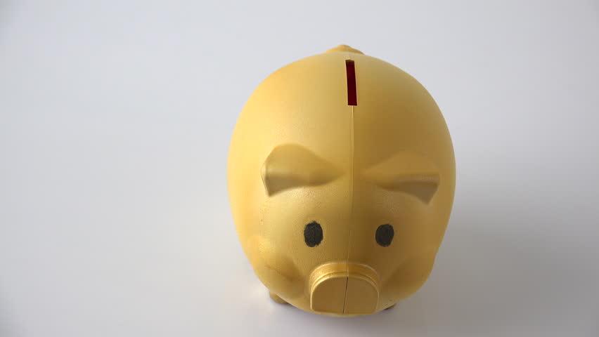 Golden piggy coin bank for money saving   Shutterstock HD Video #1013787068