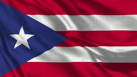 Puerto Rico Flag Loop - Realistic 4K - 60 fps flag of the Puerto Rico waving in the wind. Seamless loop with highly detailed fabric texture. Loop ready in 4k resolution