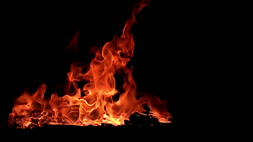 Fire flame isolated on black background. 8? slow motion / red, yellow, orange tongues of hot flame stream, twist and flash in a bewitching & hot dance on a black background | Shutterstock HD Video #1013922038