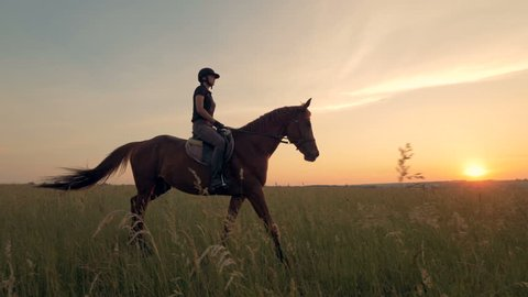 Woman rides a horse in the field, close up.